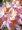 Azalka Satomi - růžovobílá
