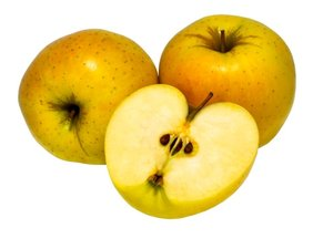 Jabloň MÍŠEŇSKÉ