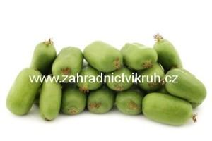 Kiwi arguta VITIKIWI - samosprašné