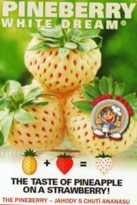 Pineberry - Ananasov� jahody