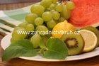 Ovocná šalvěj