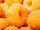 Maliník žlutý SUGANA GELB - dvakrát plodící